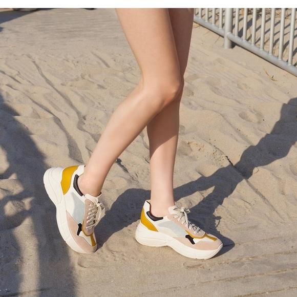 bfa09ce4066 Brand New Steve Madden Memory Chunky Sneaker 5.5. M 5bd37d076a0bb7afdac087d5